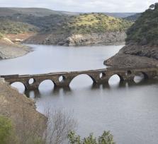La leyenda del Puente del Cardenal